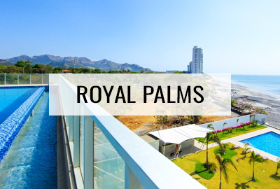Royal Palms Rentals